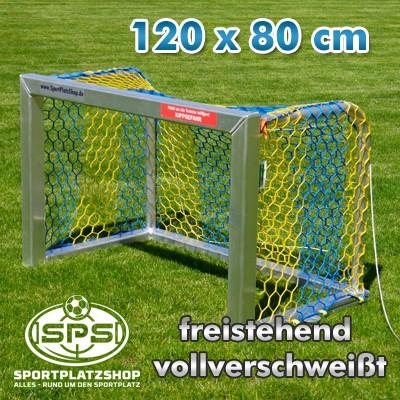 Minitor-120x80cm-vollverschweisst-Netz-blau-gelb