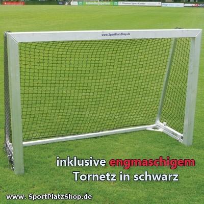"""Minitor """"S"""" - 180 x 120 klappbar vollverschweißt"""