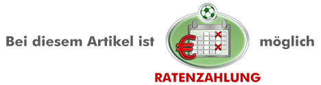 Ratenzahlung_moeglich